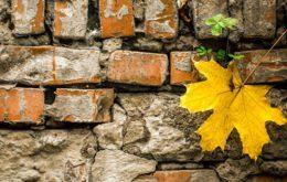 دانلود فایل صدای خراب شدن دیوار آجری